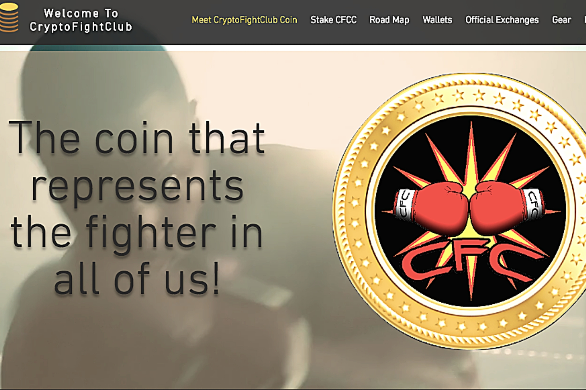 CryptoFightClub interview